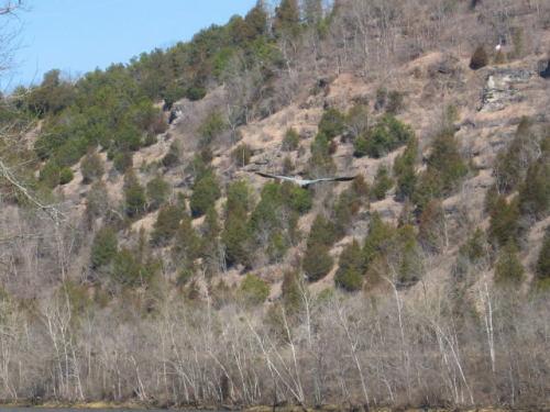 2006-02-21pic007