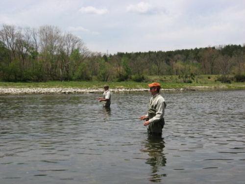 2006-04-27pic017