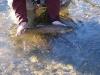 2006-01-14pic012