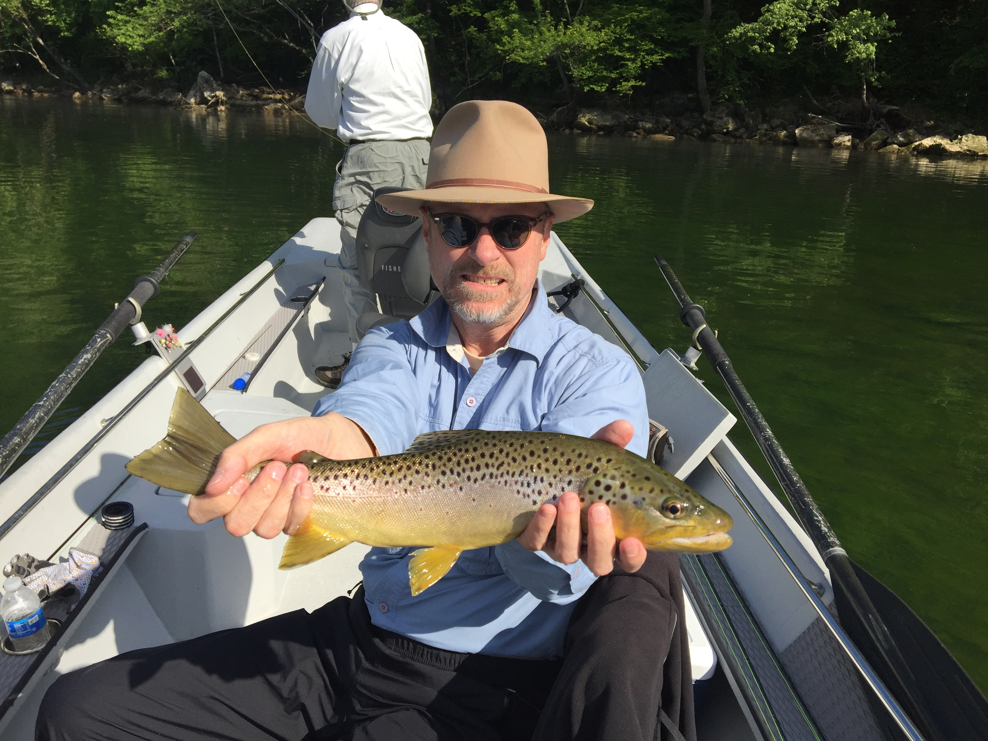 2016 gallery for Fly fishing arkansas