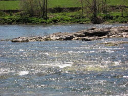 2006-04-28pic011