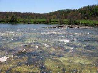 2006-04-28pic010