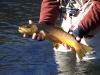 2006-01-14pic004