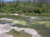 2006-04-28pic008