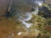 2006-04-28pic009