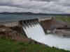 Beaver Flood Gates 076